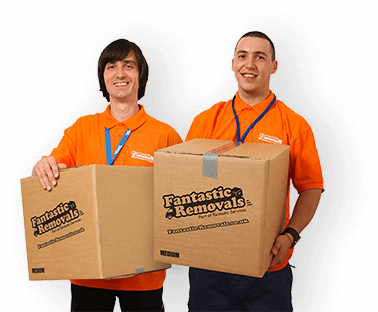 Fanatstic movers in action