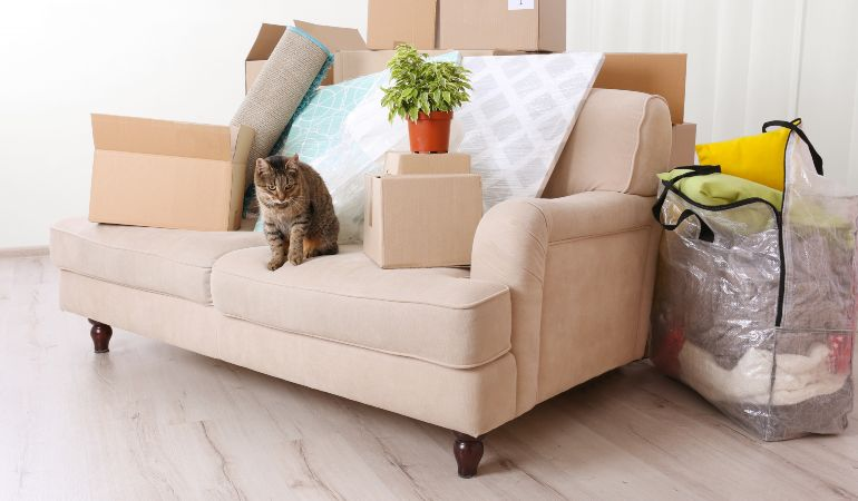 Declutter and organise your home