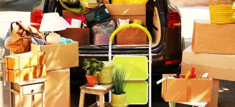 Boxes and plants packed in a haste for a move
