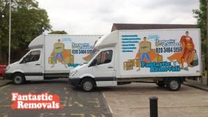 Fantastic Vans