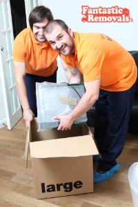 Packing and domestic removal