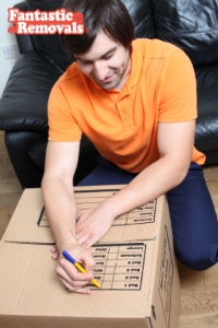 box delivery and packing services